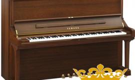 Điểm nhấn ấn tượng của Piano Yamaha U5B trong không gian nhà