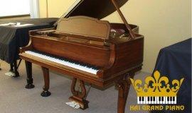 Hướng dẫn các bảo quản piano cơ đúng cách