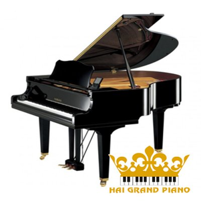 GRAND PIANO YAMAHA C7B