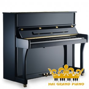 Piano Wagner W1